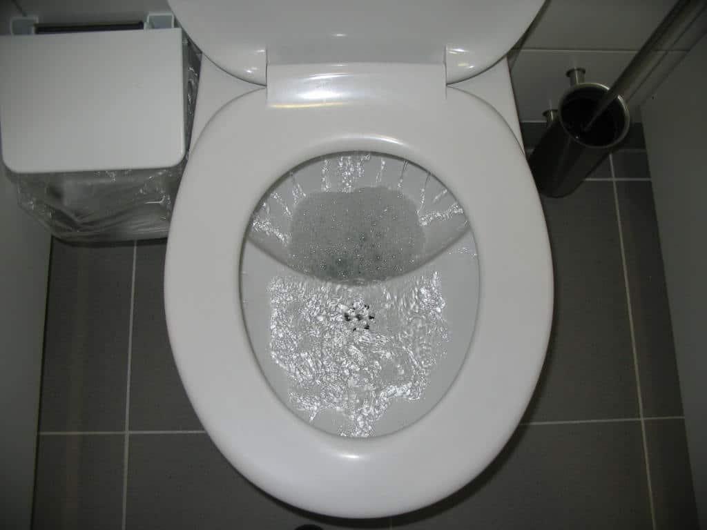 Why Won\'t My Toilet Flush? | Reasons Your Toilet Isn\'t Flushing ...
